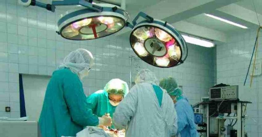 Trasplantan un riñón de cerdo a un paciente humano
