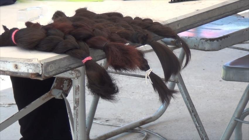 VIDEO Donan cabello para personas con cáncer en brigada de salud