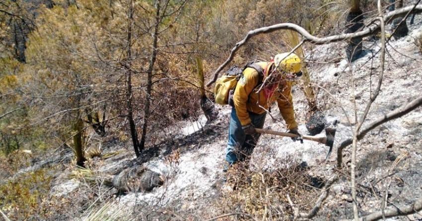 Apagan el incendio en Miquihuana